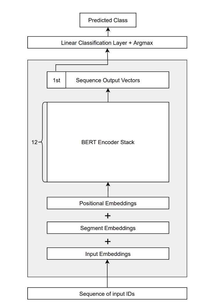 Bidirectional Encoder Representation from Transformers
